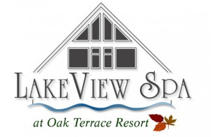 LakeViewSpa_logo_lowres