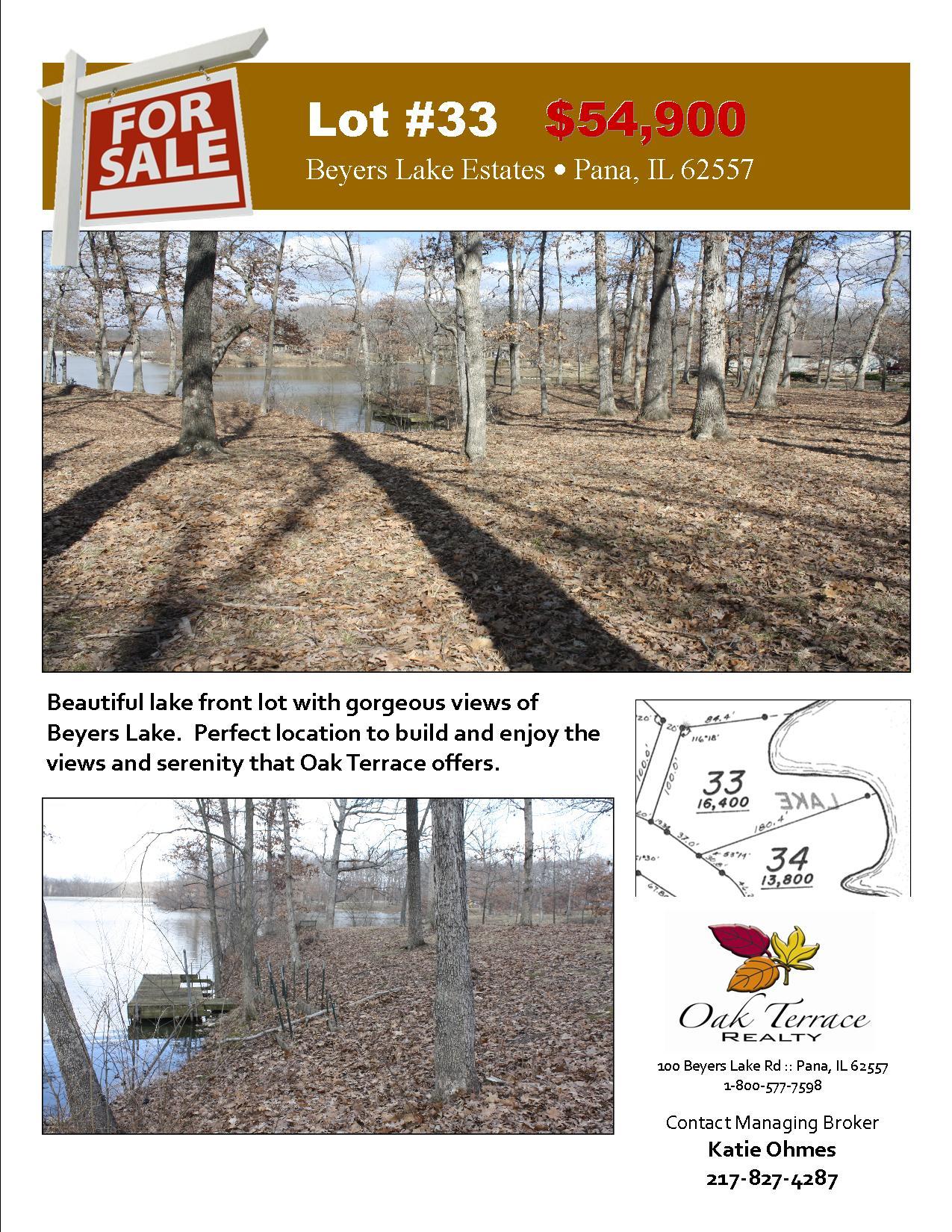 Lot #33 Sales Flyer