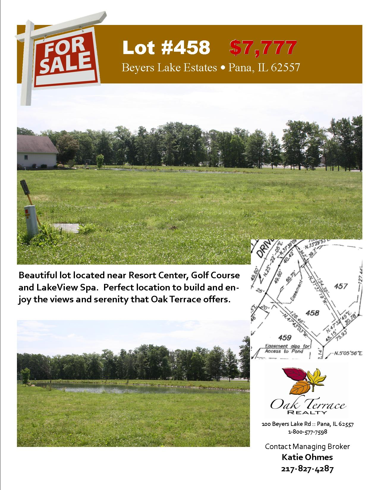 Lot #458 Sales Flyer