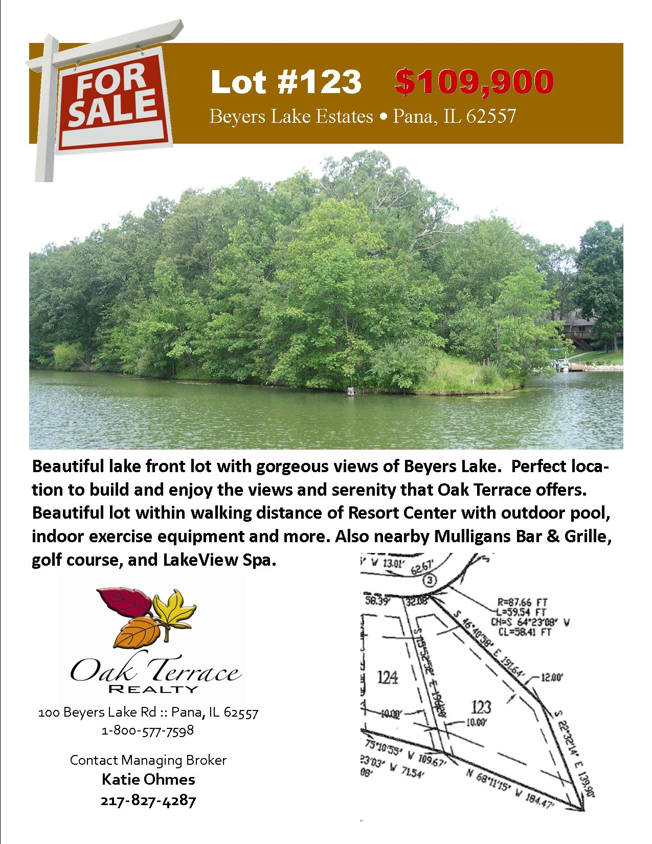 Lot #123 Sales Flyer